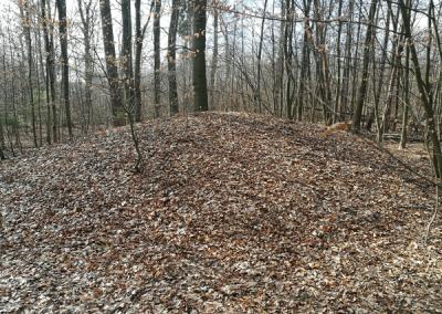 Hügelgräber