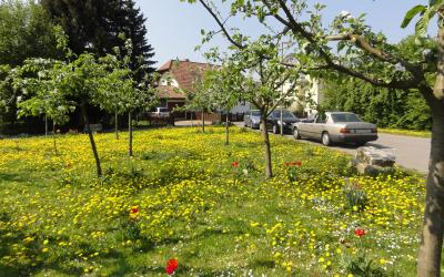 Oberstedter Apfelpark